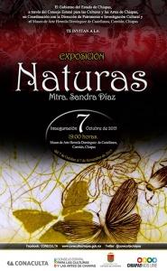 Exposición Naturas @ Museo de Arte Hermila Domínguez