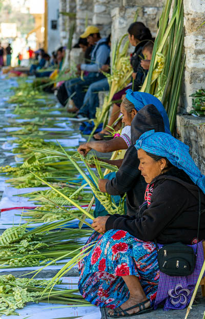 mujeres vendiendo palmitas